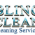 Bling+Clean+Cleaning+Services%2C+San+Antonio%2C+Texas photo icon