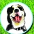 Paws-itive Experience Pet Services, LLC Icon