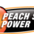 Peach State Power Icon