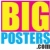 Big Posters Icon