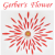 gerber's flower Icon