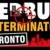 Bed Bug Exterminator Toronto Icon