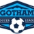 Gotham Soccer League  Icon