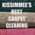 Carpet Cleaning Kissimmee Icon