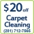 Cleaning Carpet In Houston Icon
