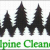 Alpine Cleaners Icon