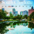 South Charlotte Lifestyle Magazine Icon