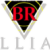 BR Williams Trucking, Inc. Icon