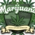 legal cannabis dispensary Icon