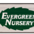 Evergreen Nursery Icon
