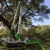 Done+Right+Tree+Service%2C+Gause%2C+Texas photo icon
