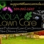 nola-lawn-care-services image