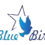 Blue-bird-star Small Profile Image